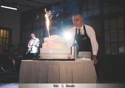 Fotografiranje vjenčanja - Maksimir with love (73)
