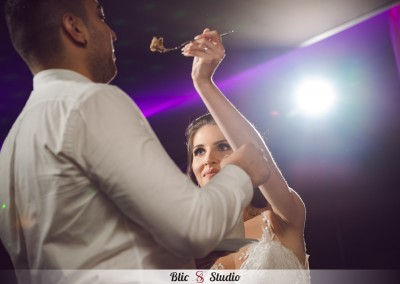 fotografiranje-vjenčanja-zagreb-phoenix-andrea-dario (152)